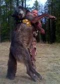Idaho Wolf 1
