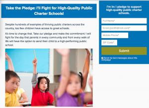 Exhibit B: Pledge webpage HERE