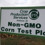 "Record <span class=""caps"">US</span> Farmers Switching to Non-GMO Crops in 2015"